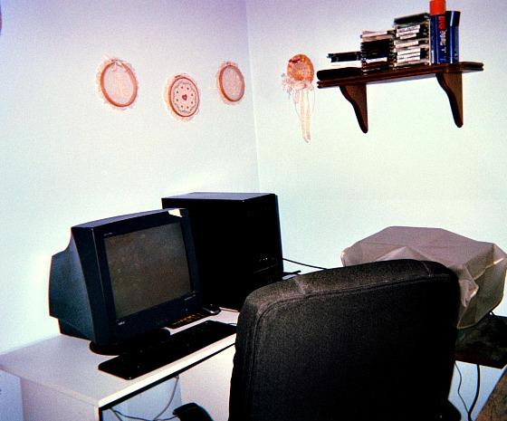 My office.