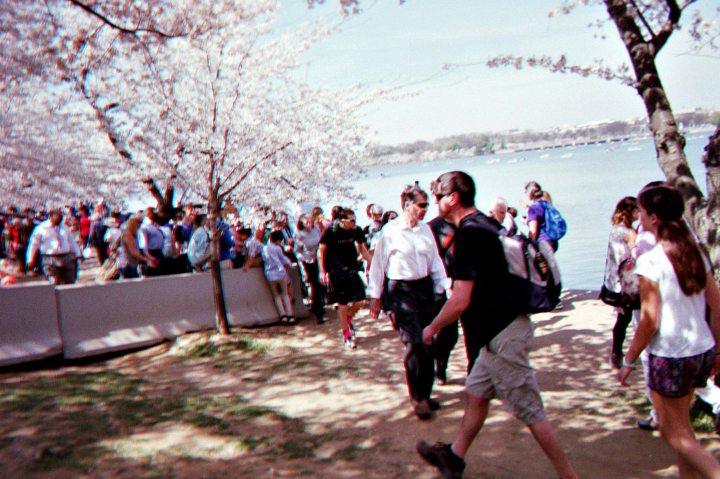 Adults world and the Tidal Basin in Washington, D.C.