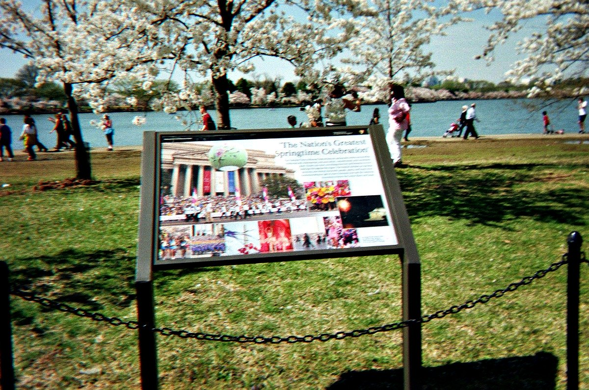 Holiday celebration ideas and the annual Cherry Blossom festival in Washington, DC.
