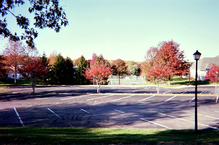 Parking lot and autumn trees.