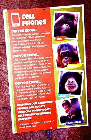 Gorillas and Cell Phones